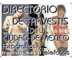 Directorio Transexual las mejores escorts